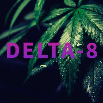 What is Delta-8 Cannabis & Does it Have THC?