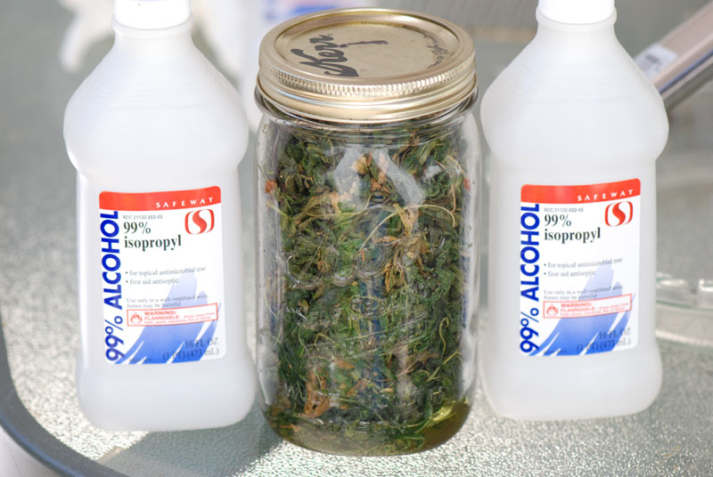 QWISO Extraction with Isopropyl | Skunk Pharm Research